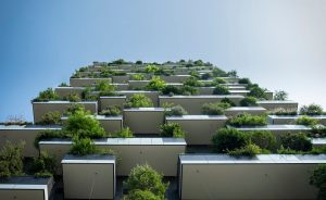 5 Green Building Architecture Principles for Innovative Homes and Offices