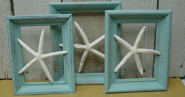 three framed accessories made from starfish