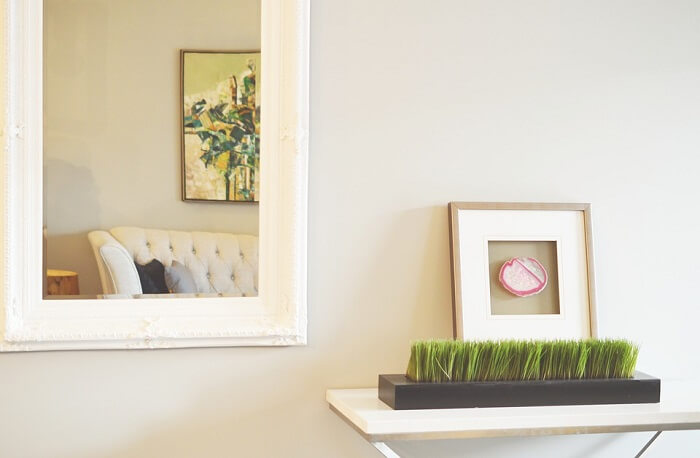 room with mirror next to white shelf with green plant and picture frame