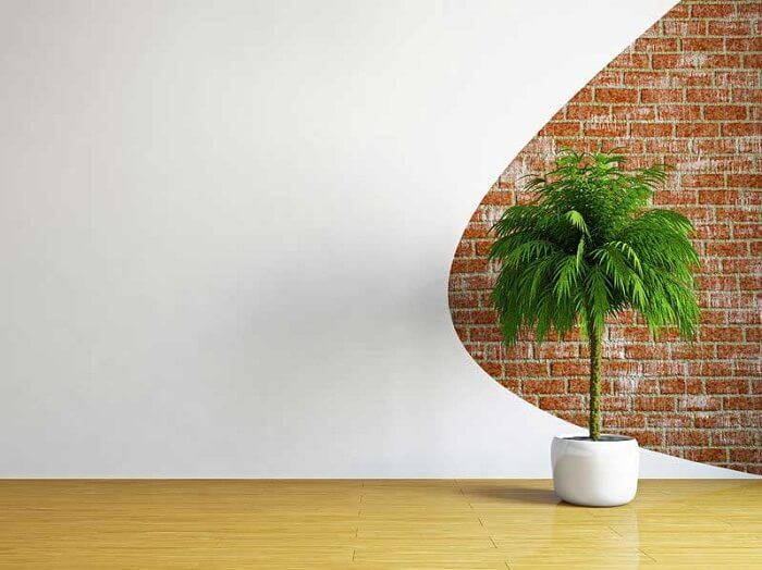hallway with half wall white, half wall of brick, indoor green plant
