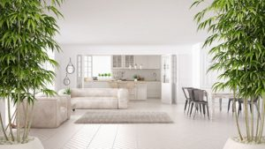 The Ultimate Feng Shui Design Guide for Your Kitchen