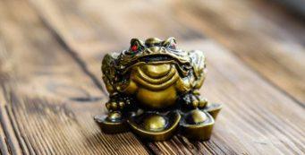 Money Frog