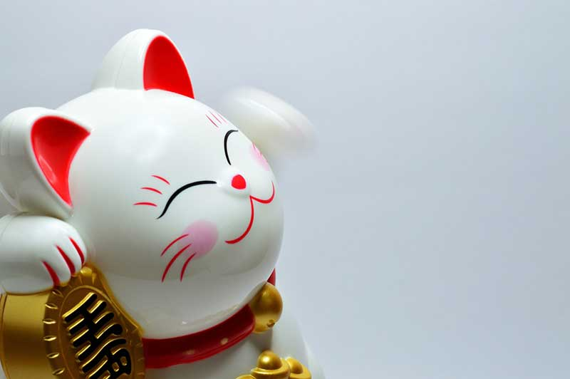 Photo of a good fortune cat